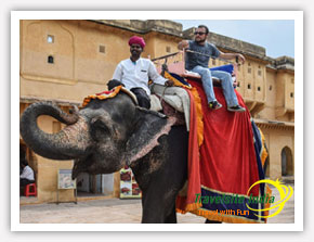 Elephant Ride by Happy Customer from Mexico